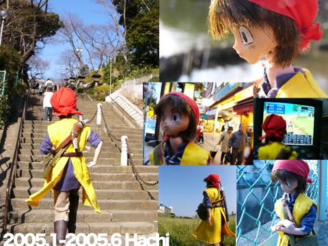 2005.1-2005.6 Hachi