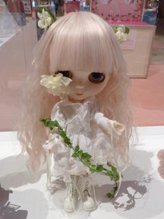 白い薔薇乙女