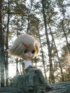 日常(2) 故郷は森